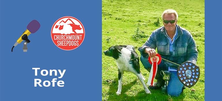 Round pen sheepdog training