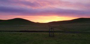 sunrise at the Zamora sheepdog trials