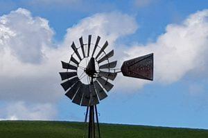 windmill at the Zamora sheepdog trial