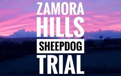Zamora Hills Sheepdog Trials